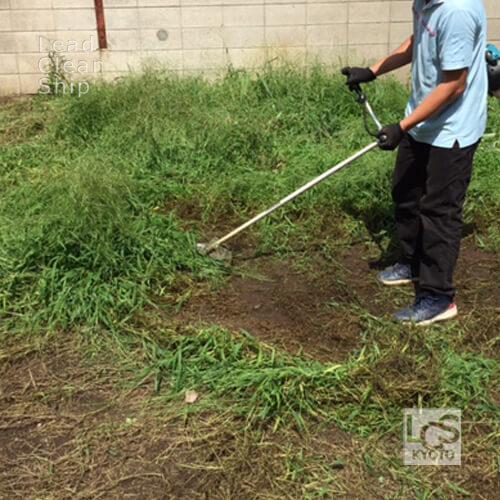 住宅地の雑草伐採